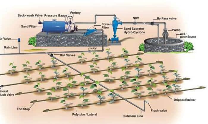 سیستم هوشمند آبیاری